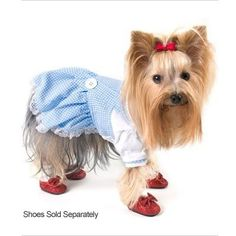 Dorothy Dress (Oz) Costume (Blue) for Dogs - Size 5 (14' l x 18.5' - 20.5' g) > Stop everything and read more details here! : Costumes for dog