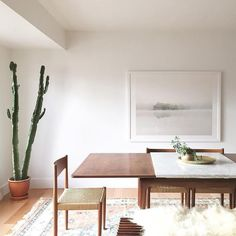 bright neutral dining room with mid century modern furniture, cactus, and soft nature photography