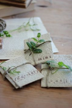 Sprucing Up Seed Packets - repurposing pages of old books into gifts