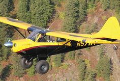 Aviat Husky | Flying Magazine