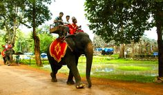 Amazing Experiences in Cambodia #traveltips #travel #guiddoo #traveltalks