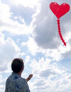 1000 images about let s go fly a kite on pinterest kites red kite