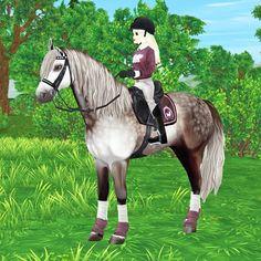 Star Stable Horses, Horse Star, Star Citizen, Horse Drawings, Cool Drawings, Star Stable Online, Horse Games, Cute Stars, Identity Art