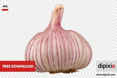 Free photo of garlic for download on www.dipixio.com #dipixio #freephoto #freebie #free #photo #freedownload #stockphotos #photography #graphics #photos #blog #blogger #pic #freeimages #stock