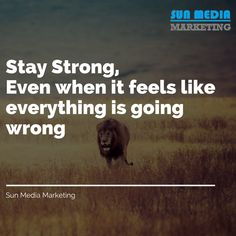 Stay strong, even if you running startup business. We are always ready to grow your business exponentially. We focus solely on promoting your business and achieve your goals and help you to move from being a startup to a corporate. Visit us at Sun Media Promote Your Business, Start Up Business, Growing Your Business, Marketing Consultant, Build Your Brand, Digital Marketing Services, Stay Strong, Media Marketing, Advertising