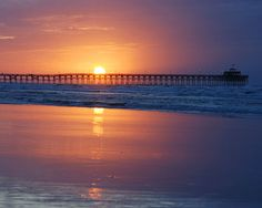 Isle Of Palms Beach In South Carolina Sc Pinterest Palm And Beautiful Places