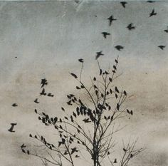 Art Print Etching, February Visit, Doves Fly In, solar plate etching on handmade paper on Etsy, $350.00