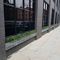 Bespoke Artificial Bay Hedging, manufactured and installed on-site by Bright Green in our Clients own planters. View other styles of artificial hedges on our website