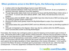 When problems occur in the BH4 Cycle...