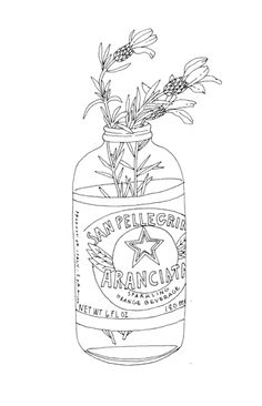 contour line drawing of flowers in a bottle. it is interesting to me because it has a lot of details. the artist is showing depth with their use of line because the label of the bottle is darker than the lines of the flower stems. Do you think the artist used sighting when they drew this?