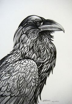 Glorious Raven Portrait by HouseofChabrier