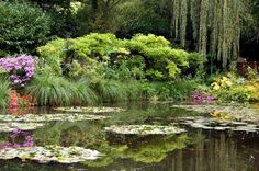 Claude Monet's lily pond in Giverny #travel #france #paris #europe