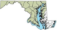 Maryland Distribution Map for Spotted Salamander