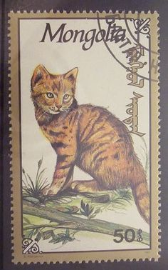 Mongolia - cat postage stamp