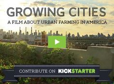 Growing Cities is a documentary film that examines the role of urban farming in America and asks how much power it has to revitalize our cities and change the way we eat.
