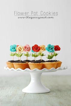 These Flower Pot Cookies are perfect for spring! The bright colors pop and the easy recipe makes them a fun party idea. With sugar cookie cups, chocolate ganache, and Oreo dirt, they are as good to eat as they cute to look at. Köstliche Desserts, Dessert Recipes, Easter Desserts, Plated Desserts, Cake Pops, Cupcakes Flores, Cookie Cups, Cookie Dough, Cupcake Cookies