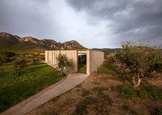 Tense Architecture Network design concrete home in a Greek olive grove | via Dezeen magazine