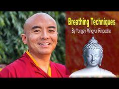 Breathing Techniques by Yongey Mingyur Rinpoche | Karma Kagyu and Nyingma | Tibetan Buddhism - (More info on: https://1-W-W.COM/meditation/breathing-techniques-by-yongey-mingyur-rinpoche-karma-kagyu-and-nyingma-tibetan-buddhism/)