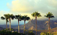 costa adeje   Fotogalerie - Costa Adeje - Dovolená 2017 - CK FISCHER Tenerife, Costa, River, Mountains, Country, World, Places, Outdoor, Teneriffe