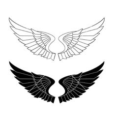 Stylized wings vector