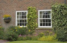 Timber Sash Windows from County is a pioneering Sliding Sash Window. Available in a wide choice of colours to ensure your sash window blends in perfectly with your home. Coral Windows, Sash Windows, Windows And Doors, Timber Windows, Casement Windows, Georgian Windows, Cottage Windows, Window Glazing