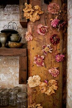 ∷ Variations on a Theme ∷ Collection of dried roses (Photo by Amy Merrick)