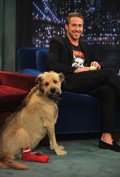 Famous Celebrity Pets | Parade.com