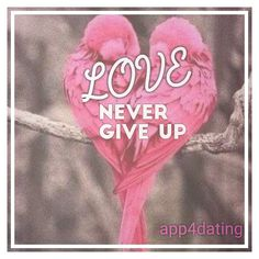 Love never gives up, never loses faith, is always hopeful, and endures through every circumstance. #app4dating #datingsite #datingwoman #datingman #relationschip #love