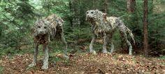 (20) Lupi/Wolves - Sally Matthews, 2002-2013