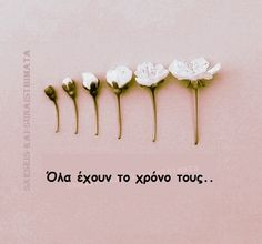 Simple Words, Greek Quotes, Annie, Life Quotes, Hair Accessories, Stud Earrings, Letters, Photos, Beauty