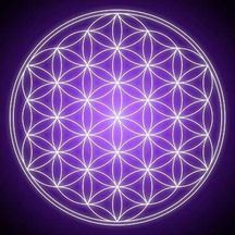 The Flower of Life - sacred geometry pattern - every line is a part of its own circle Drunvalo Melchizedek, Sacred Geometry Patterns, Geometry Help, Geometry Art, Rose Croix, Tarot Gratis, Yoga Studio Design, Little Buddha, Spiritus