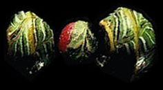 Viking Answer Lady Webpage - Viking Beads and Necklaces