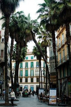 MALAGA! to fulfill a lifelong goal, and to lean up against a palm and crack open una cerveza alhambra