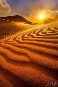 Light of the desert // beautiful nature photography Beautiful Sunset, Beautiful World, Beautiful Places, Beautiful Scenery, Desert Dunes, Landscape Photography, Nature Photography, Landscape Designs, Front Yard Landscaping