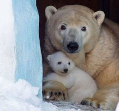What a precious faces!!!<3...what a precious mom and baby!!!!!<3