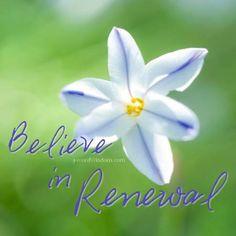 believe in renewal