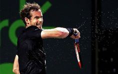 #Andy #Murray
