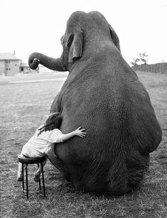 Images That Will Make You Feel Genuinely Good - My Greatest Friend 1986 Copyright of John Drysdale The girl grew up with the elephant and they - Animals Images, Animals And Pets, Cute Animals, Vintage Photography, Animal Photography, Inspiring Photography, People Photography, Beautiful Creatures, Animals Beautiful