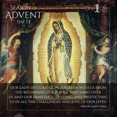Our Lady of Guadalupe Advent Prayers, Advent Season, Way To Heaven, Advent Wreath, Pink Candles, Holy Mary, Blessed Mother, Mother Mary, Our Lady