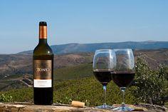Tons de Duorum with Touriga Franca, Touriga Nacional and Tinta Roriz grape varieties