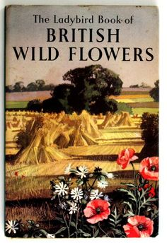 The Ladybird Book of British Wild Flowers, Vesey-Fitzgerald Brian March House Books