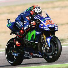 "19 mil Me gusta, 9 comentarios - Yamaha MotoGP (@yamahamotogp) en Instagram: ""Watch for wild hogs ⚠️ #MovistarYamaha #MotoGP #AragonGP"""