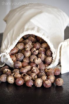 """Soap nuts are dried shells/husks from the soapberry. These berries are the fruit from a unique tree species. These shells contain a substance called saponin that produces a soaping effect. Saponin is 100% natural and a great alternative to chemical laundry detergent."""