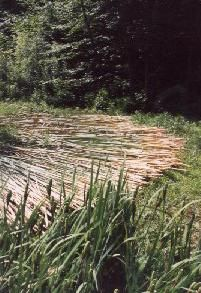 Step by Step directions for making Cattail Mats