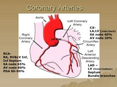 diagram of the coronary arteries by texas heart institute. Black Bedroom Furniture Sets. Home Design Ideas