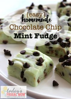 Come and try your hand at this delicious and easy homemade chocolate chip mint fudge recipe! I am excited to share with you a delicious recipe of one of my all-time favorite flavor combinations: chocolate and mint. I hope you enjoy this easy homemade chocolate chip mint fudge recipe as much as my family does! :: TodaysFrugalMom.com
