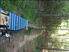 Circ Du Soleil Whirlpool Mountain Bike Trail