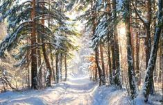 Очарование зимы на картинах современных русских и зарубежных художников