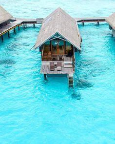 Nadire Atas Toronto Ontario Canada Luxury Vacations Around the World Shangri-La's Villingili Resort & Spa Visit Maldives, Maldives Travel, Need A Vacation, Vacation Spots, Maldives Destinations, Shangri La Hotel, Overwater Bungalows, Ultimate Travel, Resort Spa