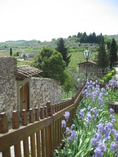 montefiorale, , Greve in Chianti, province in florence Tuscany